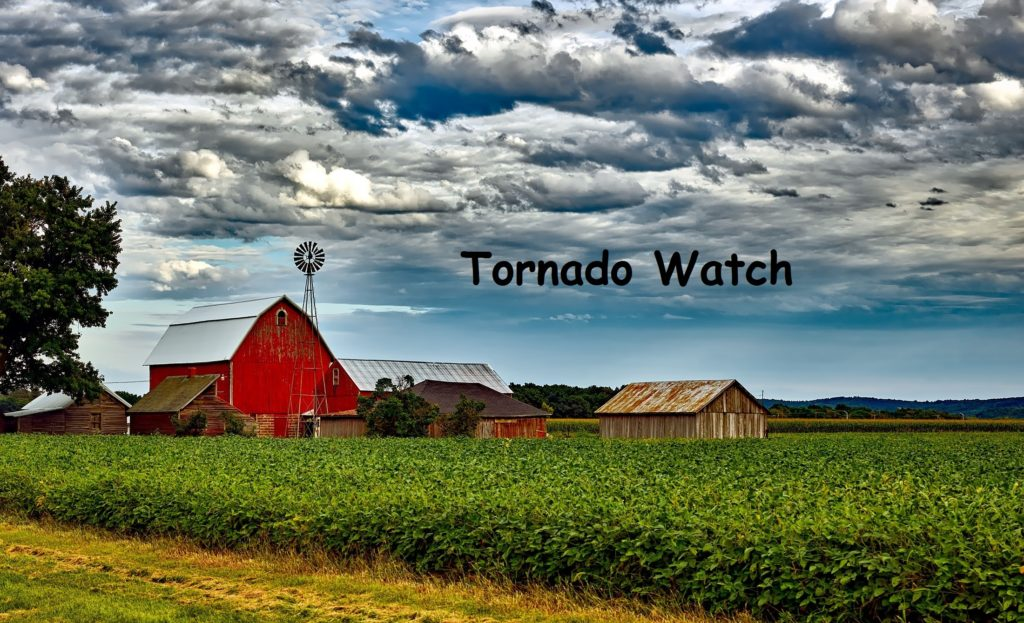 Tornado Watch on the Homestead