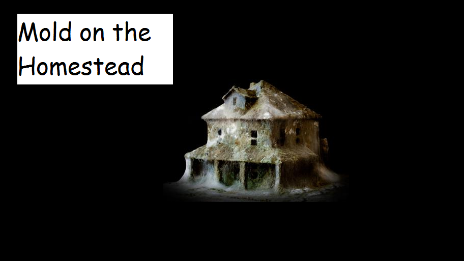 Mold, The Nightmare Chore of the Homestead